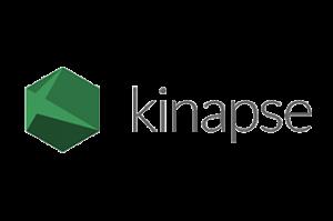 Kinapse Logo - Veeva Europe